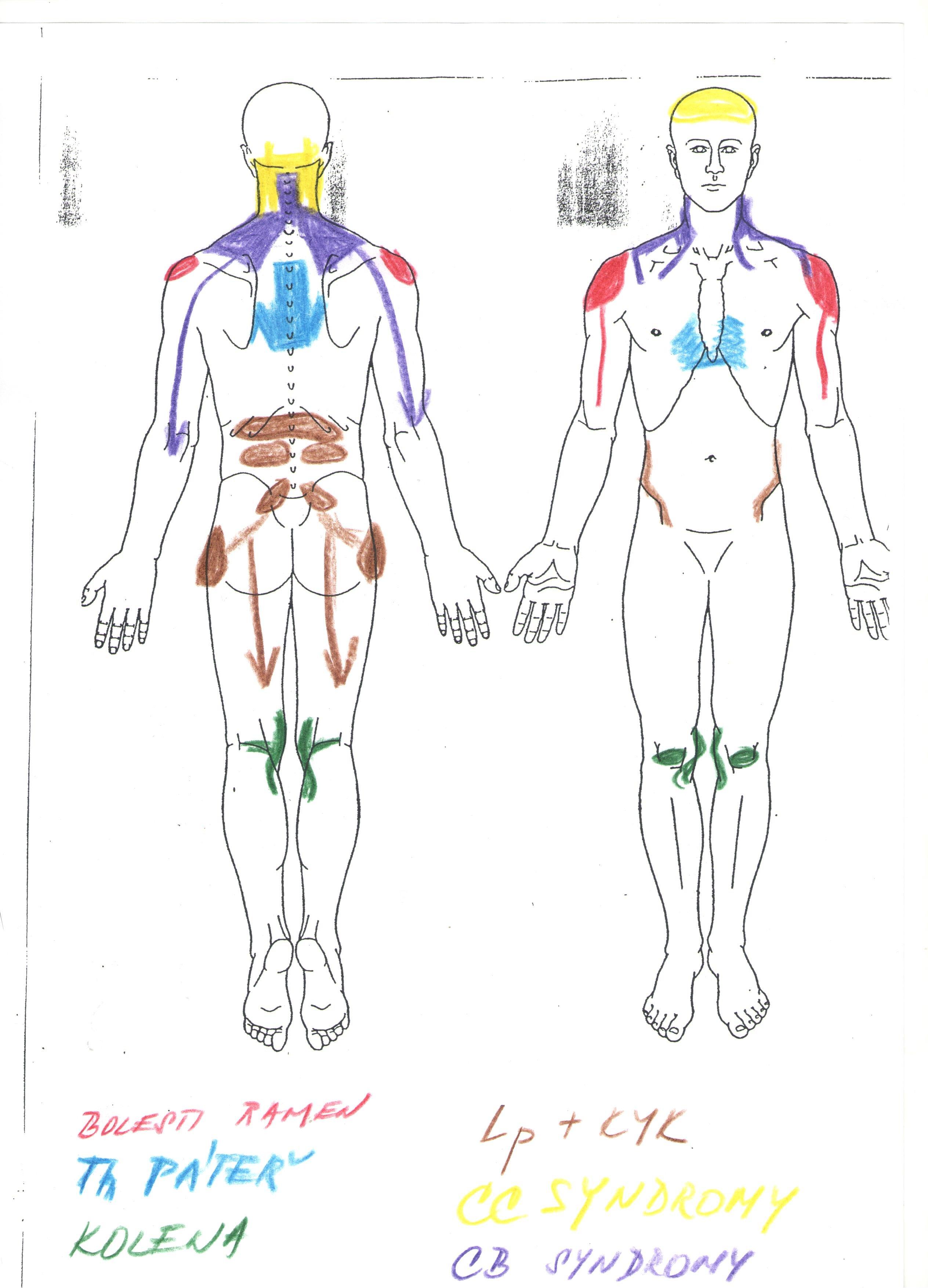 obrázek lidského těla a jeho částí
